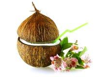 Kokosnoot met stro en bloemen over wit stock fotografie
