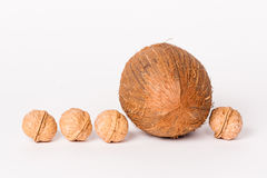 Kokosnoot en vier okkernoten Stock Afbeeldingen