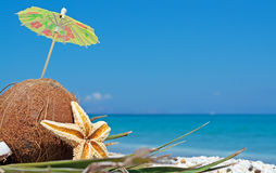 Kokosnoot onder parasol Stock Fotografie