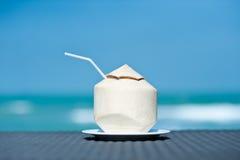 Kokosnoot op de overzeese achtergrond Stock Afbeelding