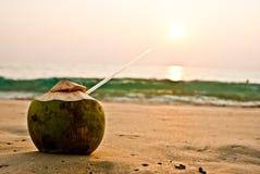 Kokosnoot op het strand bij zonsondergang Vector Illustratie