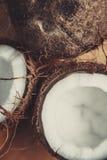 Kokosnoot op lijst Stock Foto
