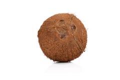 Kokosnoot op wit Stock Afbeeldingen