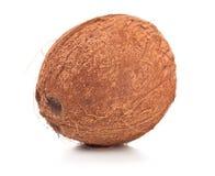 Kokosnoot op witte achtergrond Royalty-vrije Stock Afbeelding