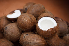 Kokosnoten Stock Afbeelding