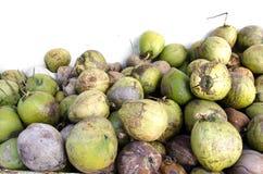 kokosnoten Royalty-vrije Stock Foto's