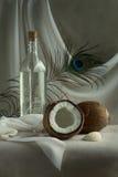 Kokosnoten Stock Fotografie