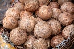 Kokosnoten bij Indische markt Royalty-vrije Stock Afbeelding