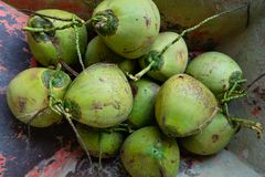 Kokosnoten in de kar stock fotografie