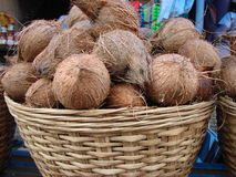 Kokosnoten in de mand Stock Fotografie