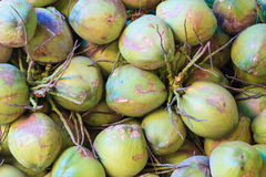 Kokosnoten in de markt Royalty-vrije Stock Fotografie