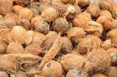 Kokosnoten, die van externe huid worden schoongemaakt stock fotografie