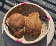 Kokosnoten in een rieten mand stock foto's