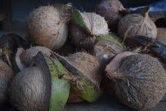 Kokosnoten klaar voor verkoop Royalty-vrije Stock Afbeeldingen