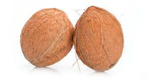 Kokosnoten op de witte achtergrond worden geïsoleerd die close-up royalty-vrije stock foto's