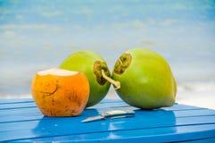 Kokosnoten op een lijst door het strand in livingston Stock Foto