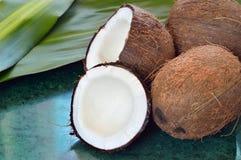 kokosnoten op groene marmeren plak Royalty-vrije Stock Fotografie
