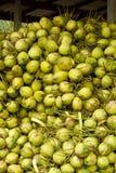 Kokosnoten in opslag Stock Afbeelding