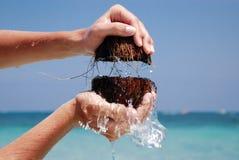 Kokosnoten in overzees royalty-vrije stock foto's