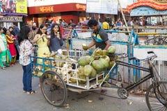 Kokosnoten voor verkoop dichtbij de Nieuwe Markt, Kolkata, India Royalty-vrije Stock Foto's