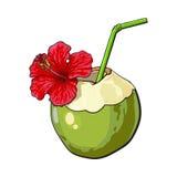 Kokosnotencocktail, drank met hibiscusbloem wordt verfraaid, de attributen dat van de de zomervakantie stock illustratie