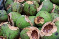 Kokosnotencoir Stock Foto