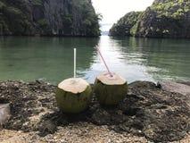 Kokosnotenliefde Royalty-vrije Stock Fotografie