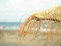 Kokosnotenpalm bij het strand van Moorea, glasheldere turkoois-blauwe Zuid-Pacifische oceaan Royalty-vrije Stock Afbeeldingen