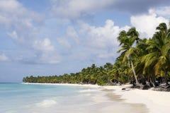 Kokosnotenpalmen op wit zandig strand in Saona-eiland royalty-vrije stock foto