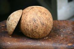Kokosnotenshell open hoofdglb Royalty-vrije Stock Foto's