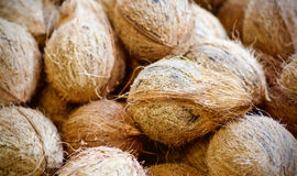 Kokosnotenshells Stock Foto
