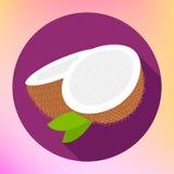 Kokosnotenteken Het Pictogram van het Cocovoedsel Stock Fotografie