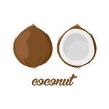 Kokosnotenvruchten affiche in beeldverhaalstijl het afschilderen van geheel en half Verse sappig op witte achtergrond met inbegri Stock Afbeelding