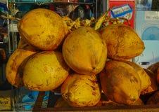 Kokosnotenvruchten voor verkoop stock foto