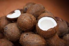 Kokosnüsse Stockbild