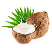 Kokosnüsse mit Milch spritzen und treiben lokalisiert auf weißem Hintergrund Blätter Lizenzfreies Stockbild