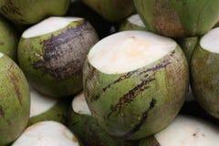 kokosnöt Arkivfoton