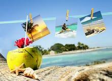 Kokosnötcoctail, sjöstjärna och pics Arkivfoto