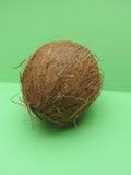 Kokosnötfrukt över ljus - grön bakgrund Arkivbilder