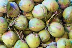 Kokosnötter i marknaden Royaltyfri Fotografi