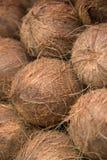 Kokosnötter på marknaden Arkivfoto