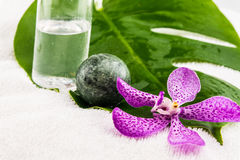 Kokosnussölflasche, Eistein mit rosa mokara Orchideen und Grün Stockfotografie