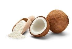 Kokosnuss Lizenzfreie Stockbilder