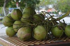 Kokosnuss Stockbilder