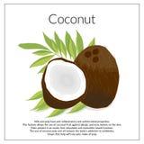 Kokosnuss auf Blättern stock abbildung