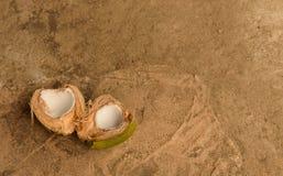 Kokosnuss auf braunem Hintergrund lizenzfreie stockfotos