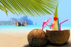 Kokosnuss auf dem Strand in Phi Phi-Insel Lizenzfreie Stockfotos