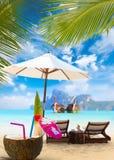 Kokosnuss auf dem Strand in Phi Phi-Insel Stockfotografie