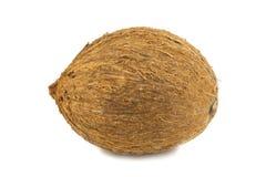 Kokosnuss auf einem weißen Hintergrund Lizenzfreie Stockfotografie