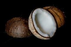 Kokosnuss auf schwarzem Hintergrund Stockbild